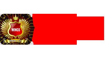 Wings NEET Academy Logo